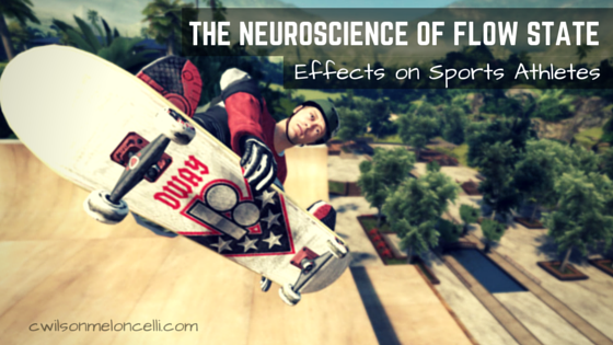 neurochemistry of flow state, neuroscience of flow state, neurology of flow state, rise of superman, physical movements, master of neuroscience, flow state, state of flow, elite flow, sports training, science of flow, top level performance, the zone, extreme sports athletes
