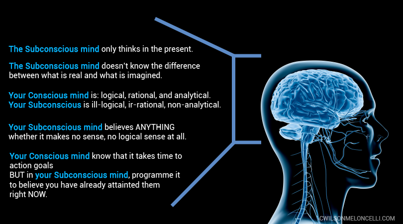 The Mind as the Software of the Brain