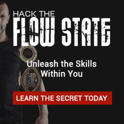 hack the flow state banner 250x250
