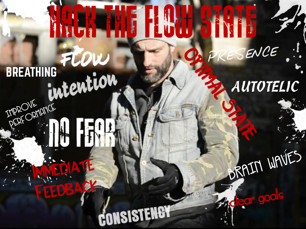 hack the flow state banner 728x90