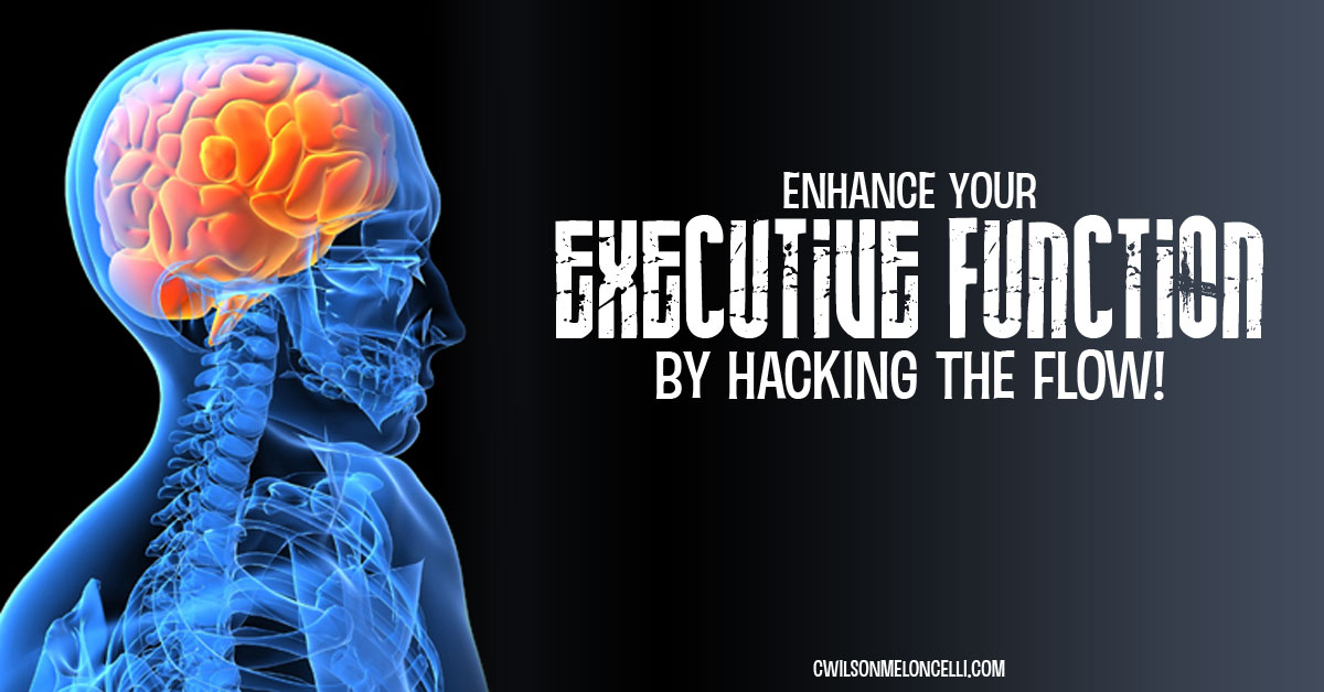 enhance your executive function by hacking the flow, flow state, cognitive function, cognitive control, cognitive processes, filipino martial arts, kali