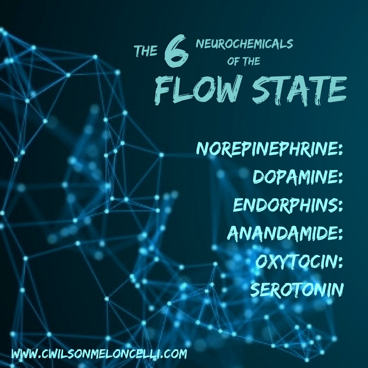 6 neurochemicals that are being released during the flow state.
